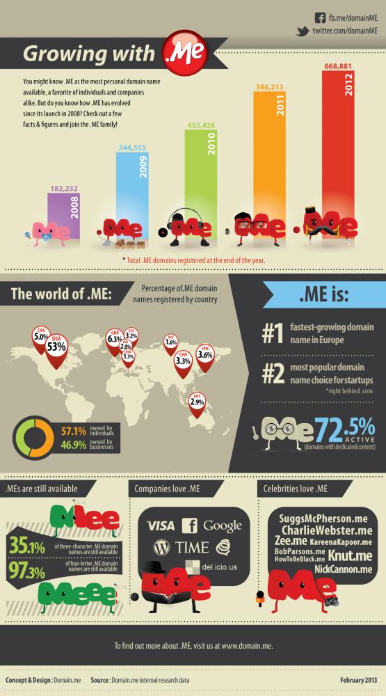 Infografik_feb-2013-555x1000